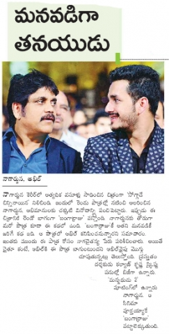 Akhil Play Special Role In Bangaraju Movie