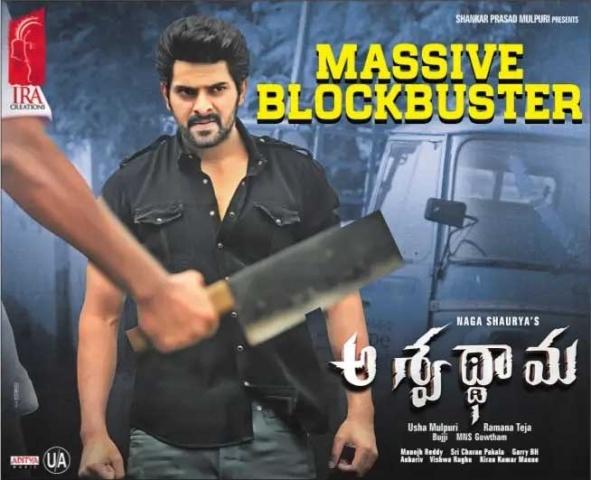 Aswathama Movie Massive BlockBuster