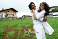 Dhada Movie Stills