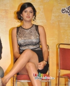 Wanted Audio Launch