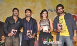 Gopichand Wanted Songs Released
