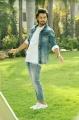 Happy Weeding Telugu Movie Posters Happy Weeding Telugu Movie stills Happy Weeding Telugu Movie pictures, Happy Weeding Telugu Movie updates.