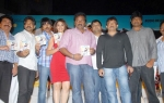 Mirapakaya Audio Function