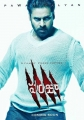 Panja Movie Stills