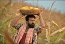 Rangasthalam Telugu Movie Postures  Stills Pictures