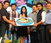 Snehithudu Audio Launch
