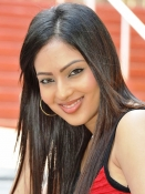 Nikesha Patel Photo Gallery