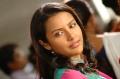 Priya Anand Latest Hot photoshoot