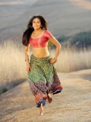 Priyamani Hot Stills