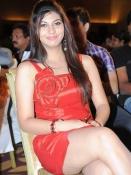 Sarah Sharma at Disco Audio Launch