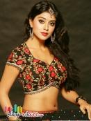 Shriya Saran Spicy pics