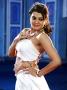 Tashu Kaushik Hot pics