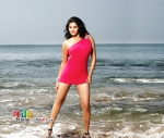 CCL Actresses Stills